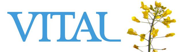640x180-vital-sommer-logo